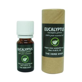 에센셜오일 지관(유칼립투스 오일/Eucalyptus/DH아로마오일/아로마테라피 추천)